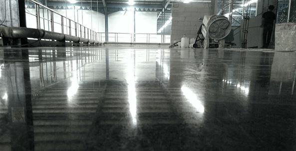 mayora-3300x153